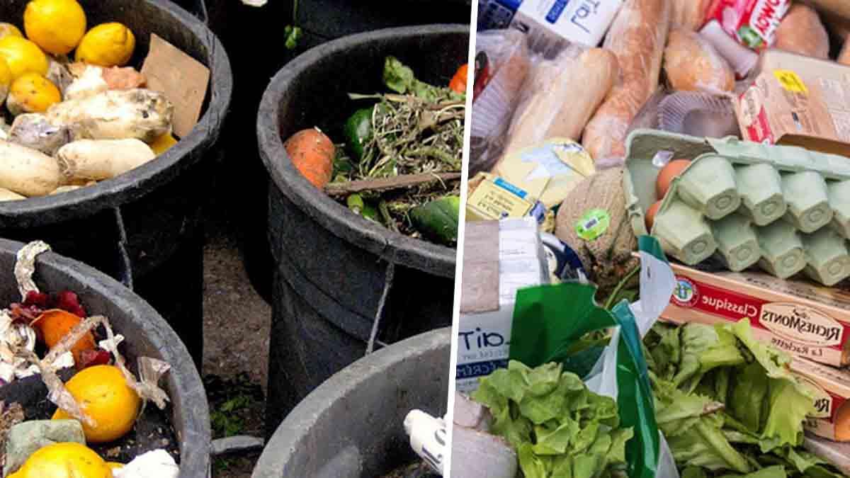 Alimentation : ce chiffre hyper alarmant de nourriture gaspillées annuellement dans le monde