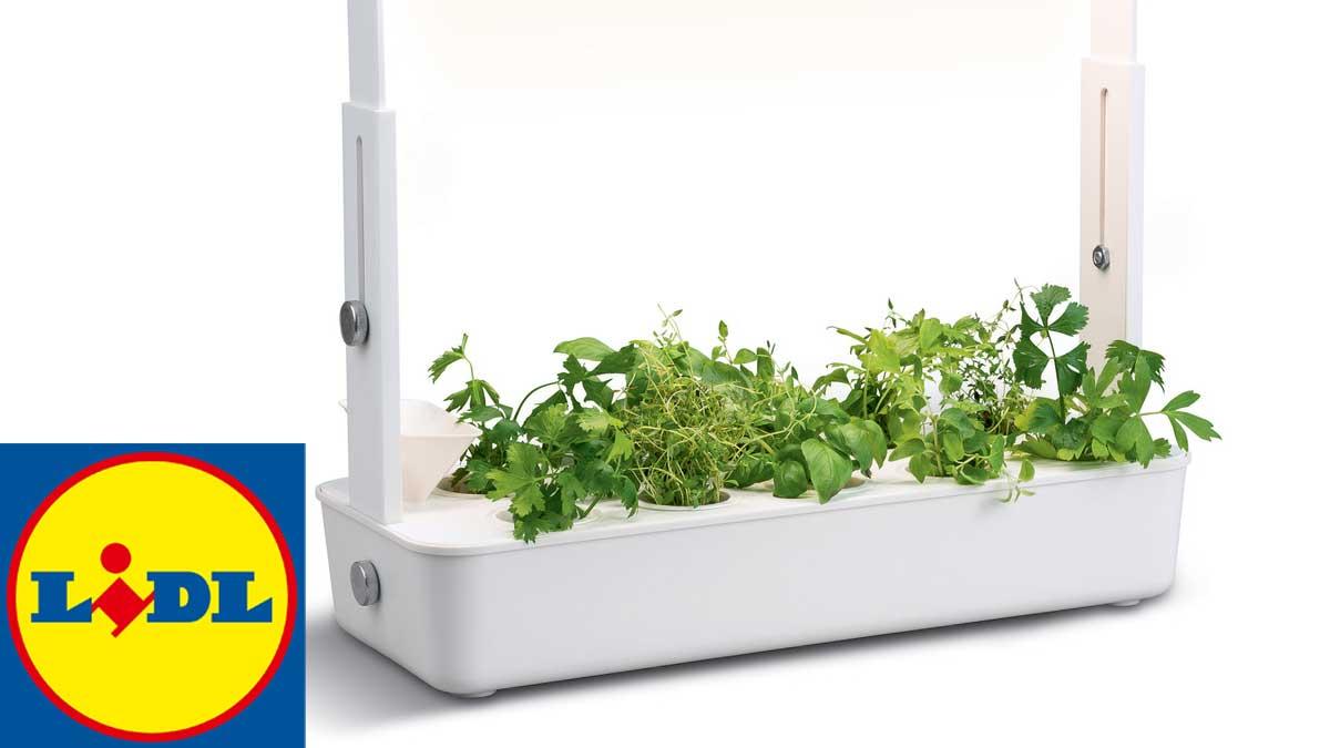 Nouveau chez Lidl ! La marque vous propose un set de jardinage d'intérieur à bas prix !