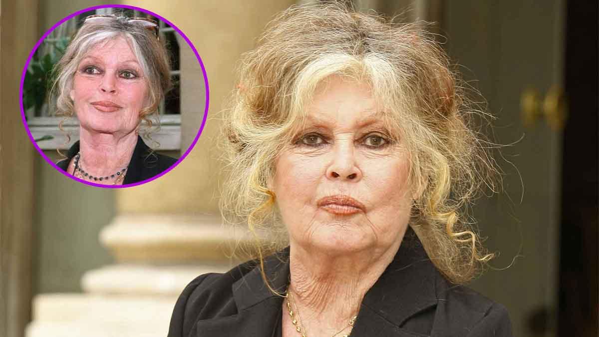 Brigitte Bardot : humiliante ? Un célèbre artiste s'est pris un râteau !